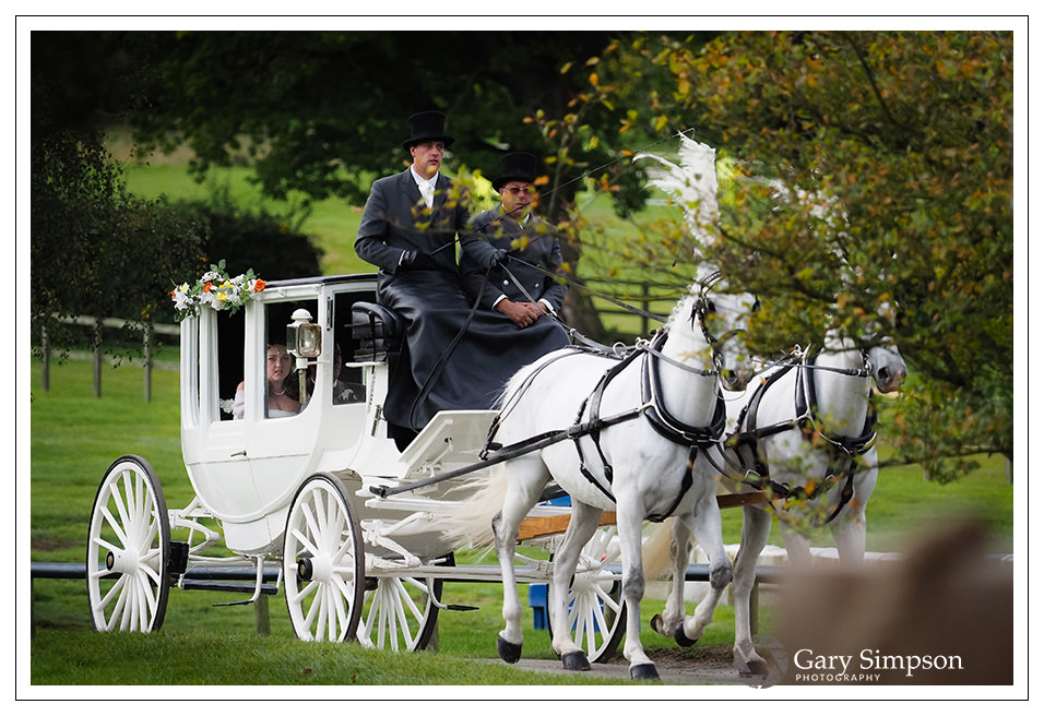 a ride around the woods at camp katur for the bride and groom in a horse drawn carriage